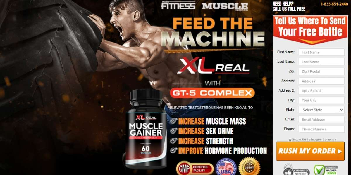 10 Sites to Help You Become an Expert in XL Real Muscle Gainer !!